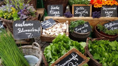 Image result for farmers market cambridge uk free image
